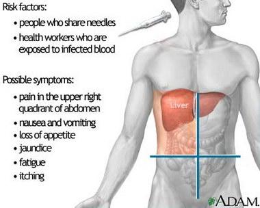 hepatitis c and liver